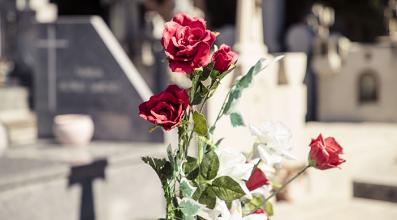 Unidades de enterramiento rosas - Servicios funerarios EMSFCM Madrid